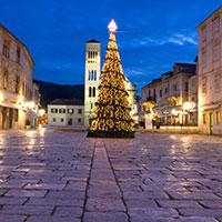 Christmas Tree On Hvar